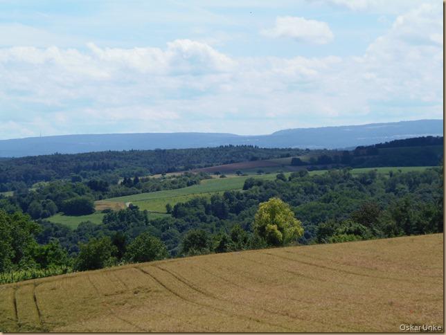 Sommerlandschaft bei Weingarten