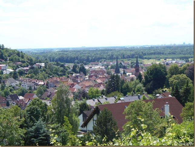 Blick auf Weingarten