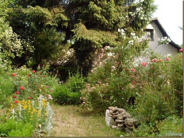 Biogarten 1