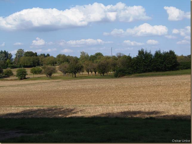 Wöschbacher Landschaft