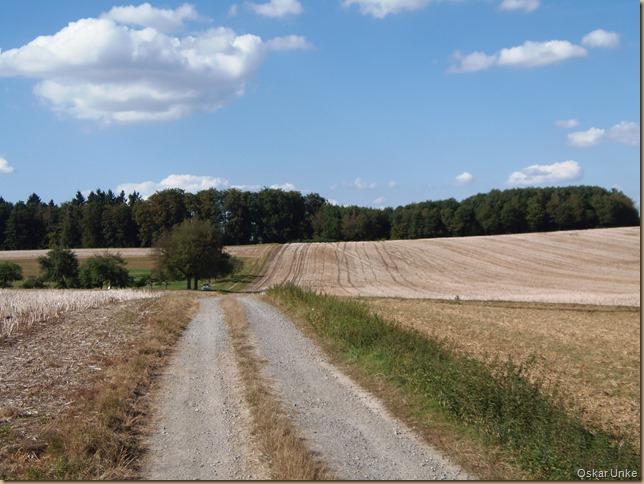 Wöschbacher Feldwege