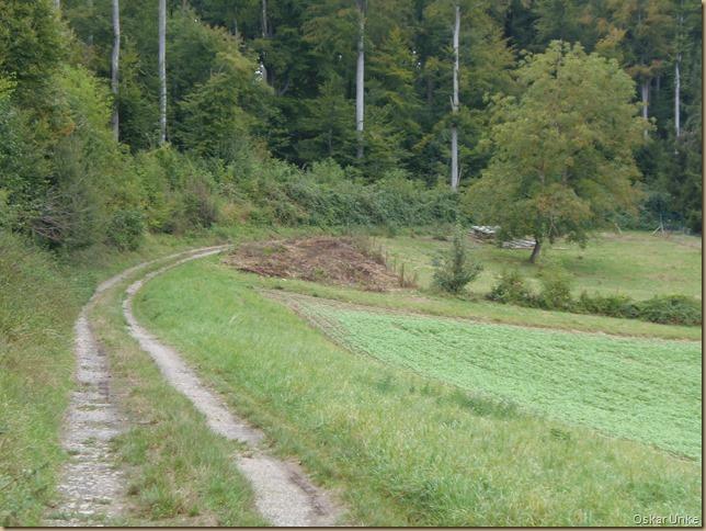 Waldrandweg Wössingen