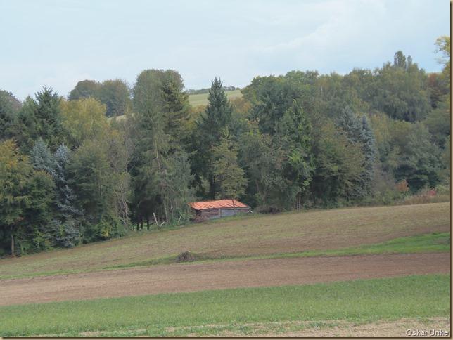 Flurlandschaft Weingarten