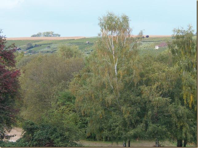 Blick auf den vorderen Kirchberg