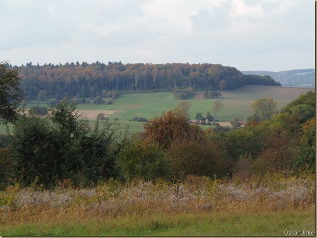 Herbstlandschaft in Wössingen