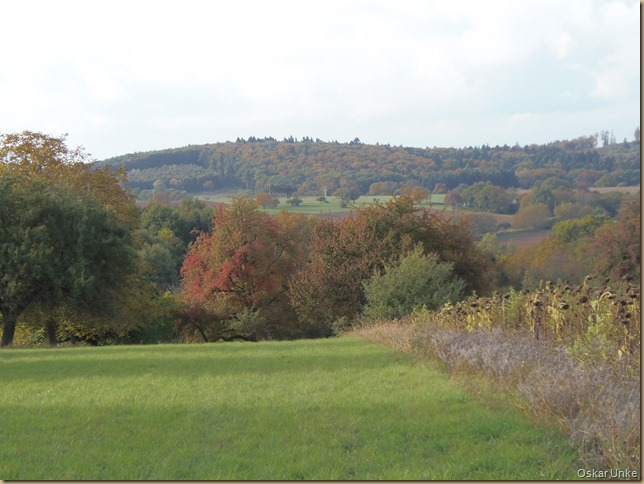Herbst in Wössingen