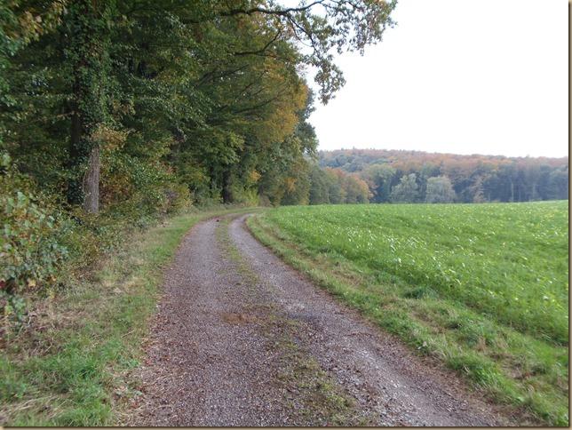 Oberhalb von Binsheim
