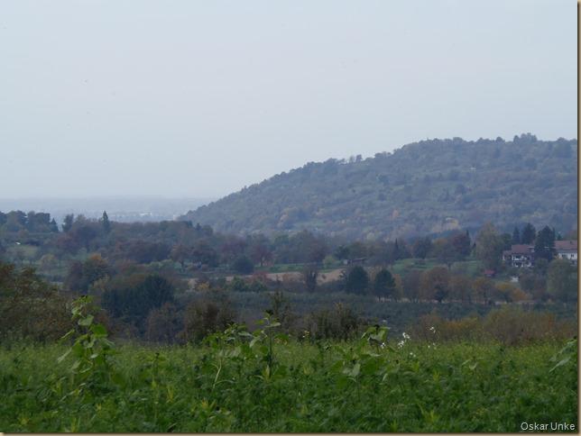Blick auf Michaelsberg und Rheinebene