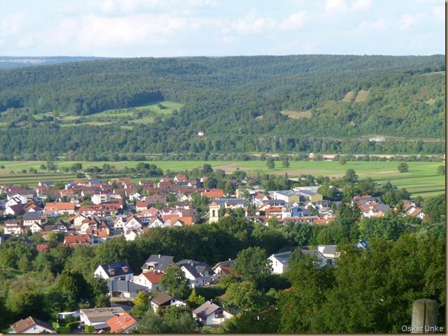 Blick auf Obrigheim und Neckarwiesen
