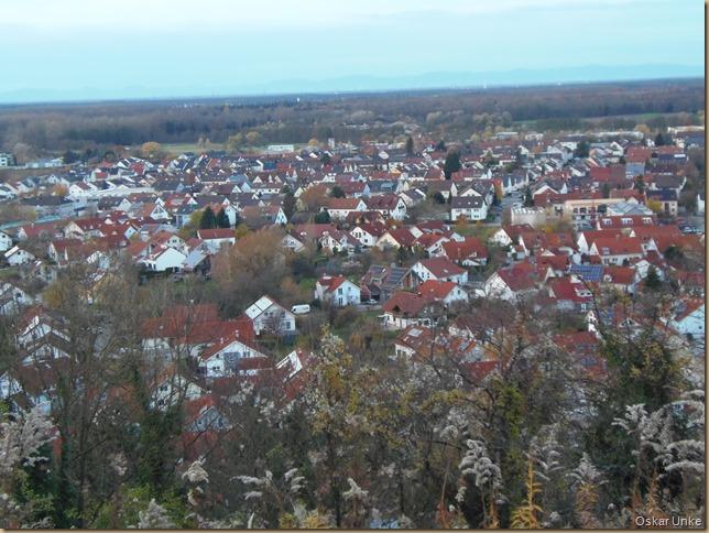 Weingarten vom Kirchberg aus