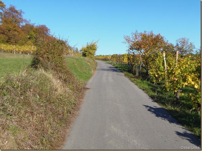 Weingartener Weinbergweg