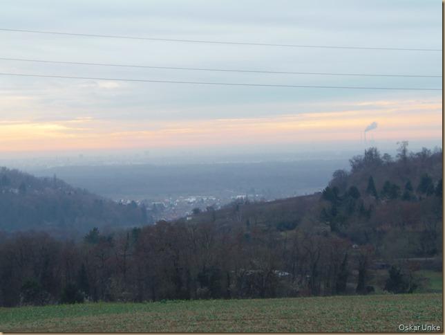 Blick über Weingarten in die Rheinebene