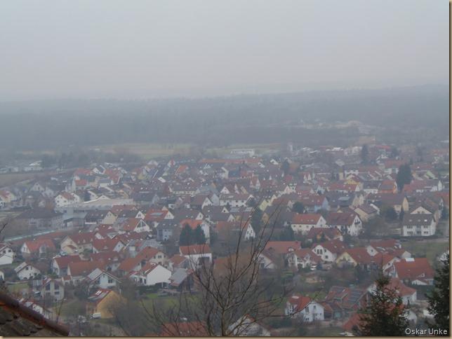 Weingarten im Nebel