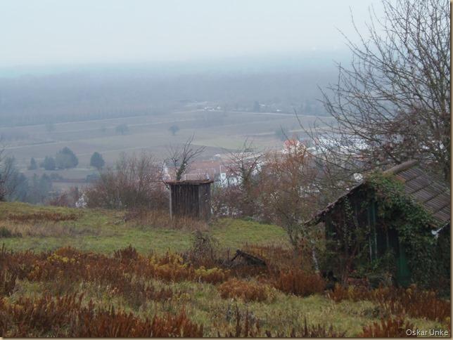 Weingartener Weinberglandschaft