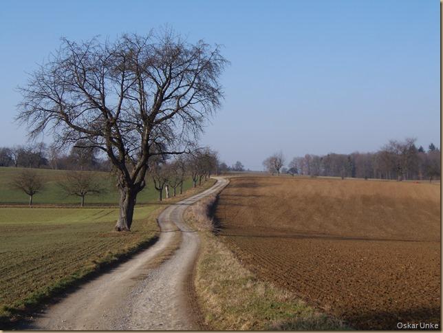 schöne Feldwege