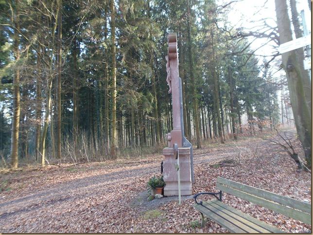 im Wöschbacher Wald