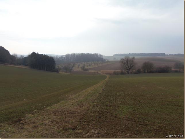 Februarlandschaft bei Gondelsheim