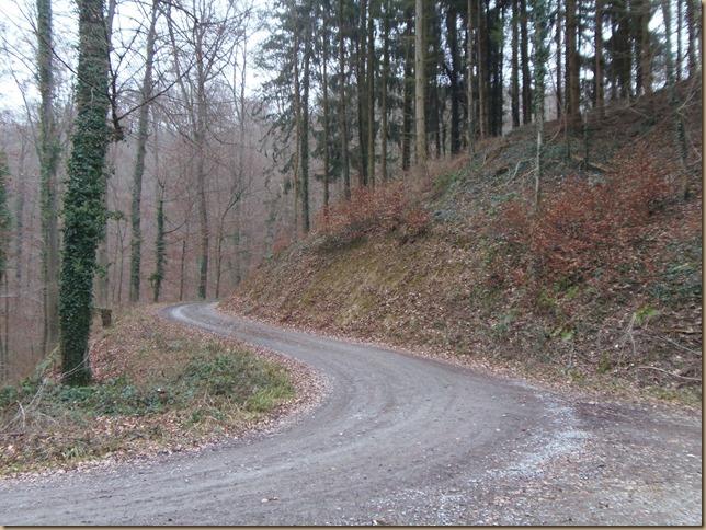 Waldweg in der Klamm