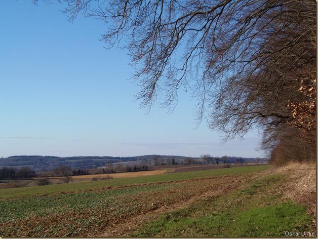 Auf Jöhlinger Gemarkung
