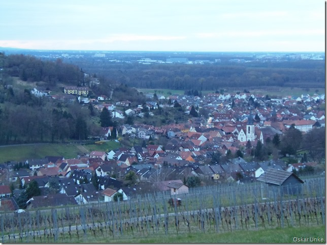 Blick auf das abendliche Weingarten