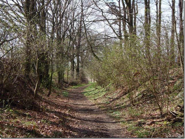 Binsheimer Fernweg