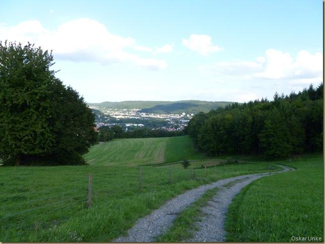 Obrigheimer Schloßwiesen