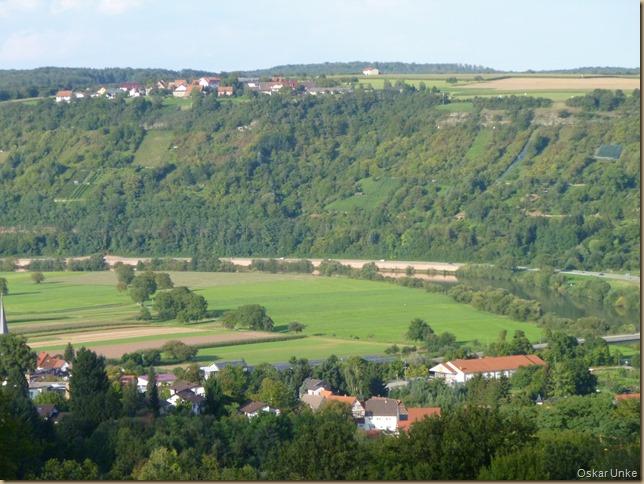 Neckarwiesen in Obrigheim