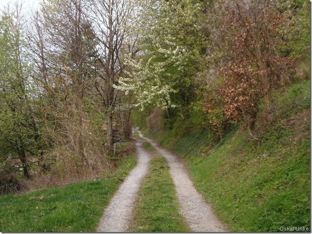 solche Wege laufe ich gerne