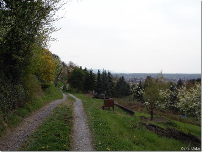 Katzenbergweg