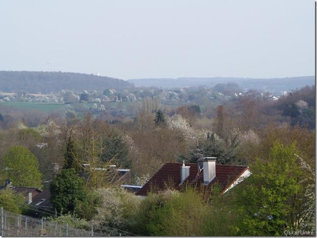 April 2017 - 05- Olymp - Weing- Tiefental - Katzenberg 139