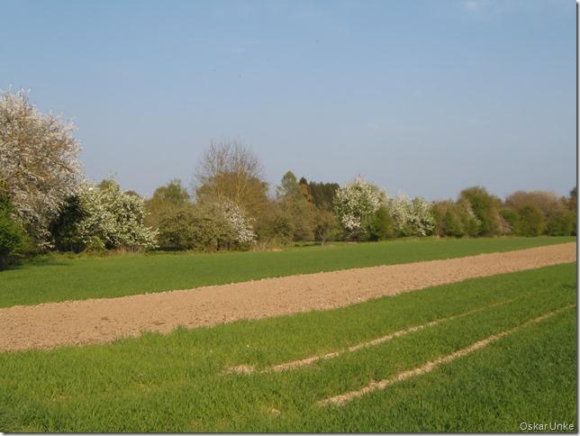 übige Frühlingslandschaft