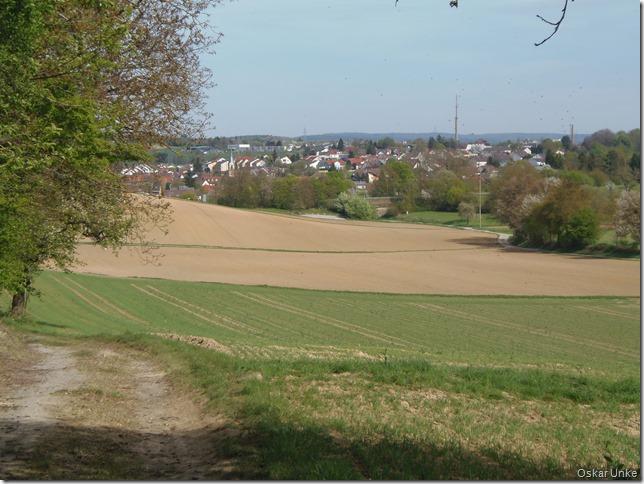 Blick auf Bretten-Diedelsheim