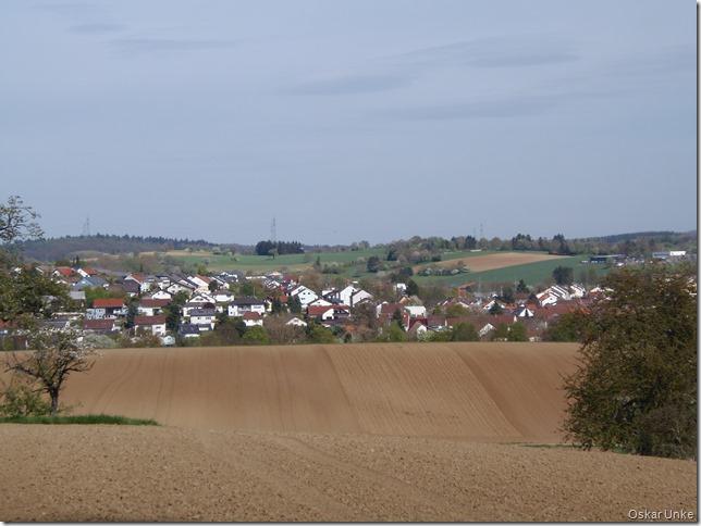 Blick auf Diedelsheim