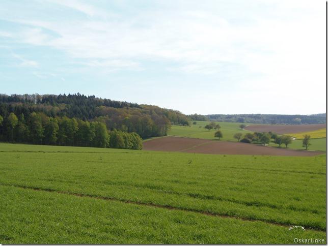 Weiter in Richtung Wössingen