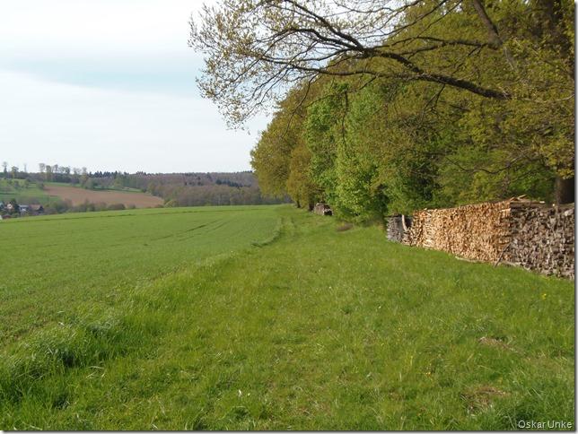 Waldwiesenrandweg