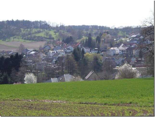 Blick auf Wössingen vom oberen Hauweg