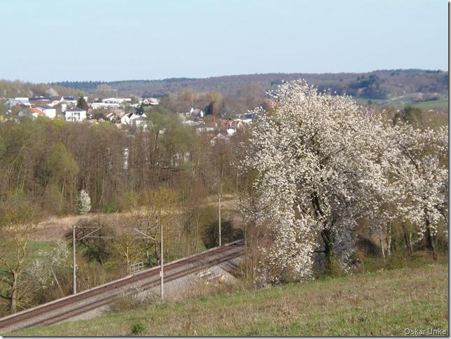 Blick auf Wössingen