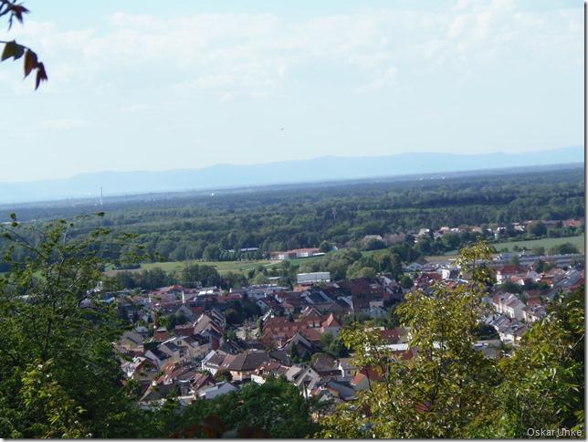 Blick auf Weingarten und Rheinebene