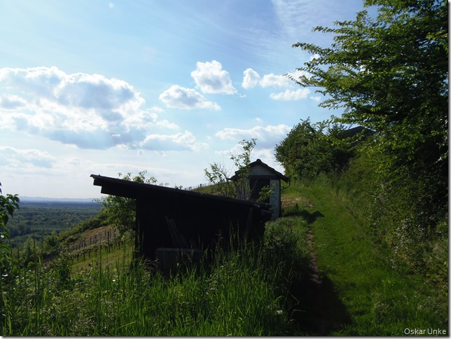 Weinbergweg am südlichen Kirchberg