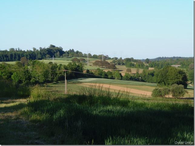 Wössinger Flurlandschaft