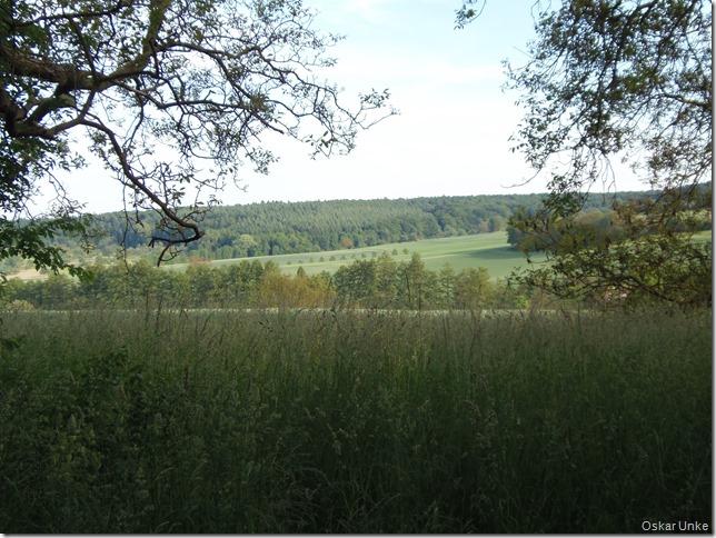 Blick in die Wössinger Landschaft