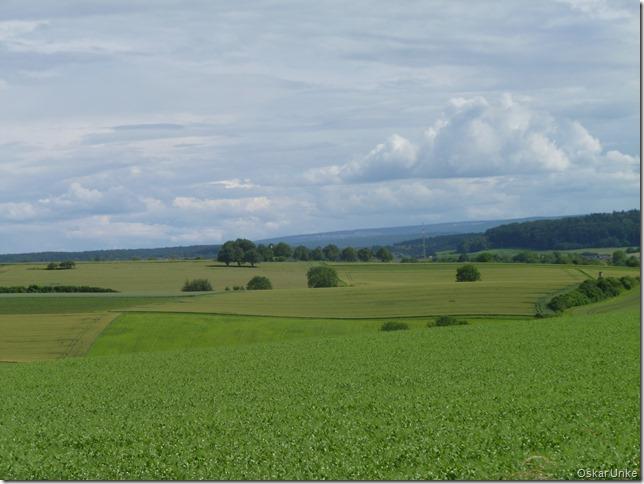 Feldflur zwischen Weingarten und Walzbachtal