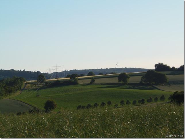 Weites grünes Land