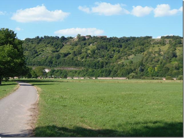 Obrigheimer Neckarwiesen