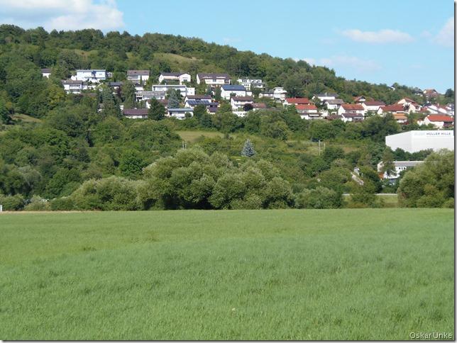 Blick nach Diedesheim