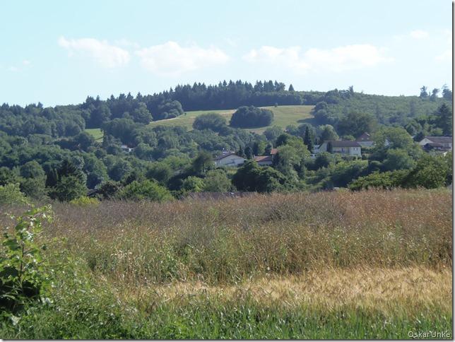 Blick auf Obrigheimer Schloßwiesen