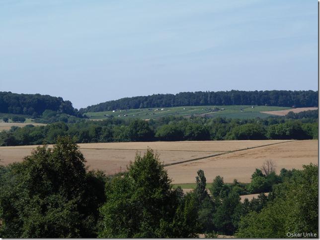 Blick vom Waldweg auf Jöhlinger Weinberge