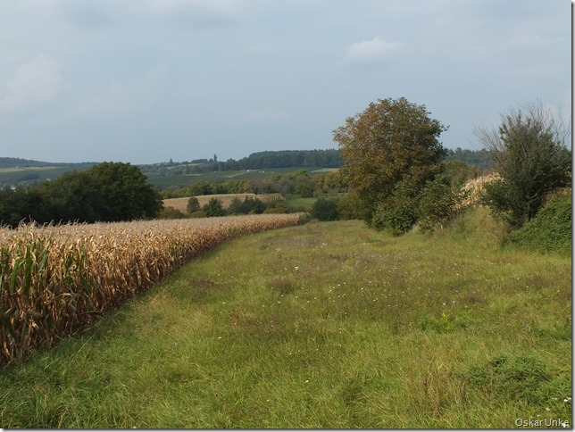 Obergrombacher Herbstlandschaft