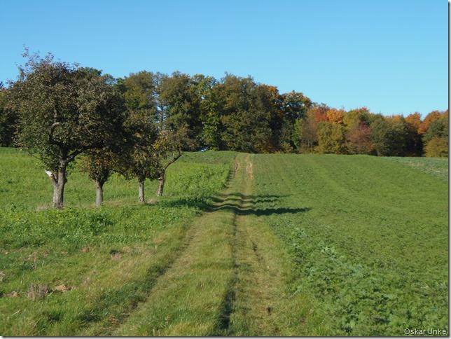 Feld- und Wiesenwege