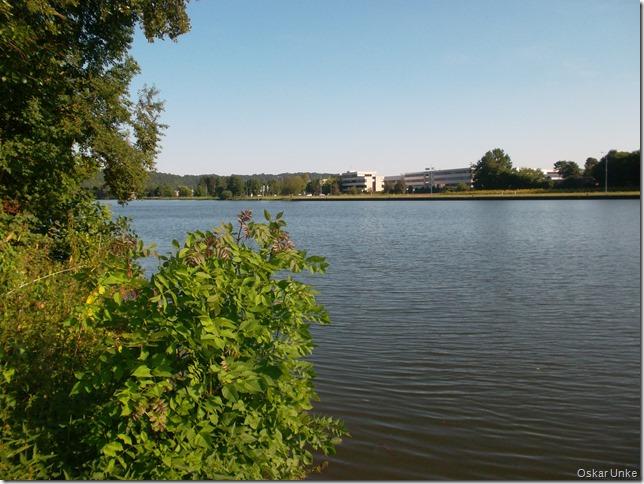 Der Neckar zwischen Neckarzimmern und Haßmersheim
